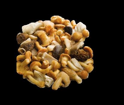 Funghi mix fantasia con porcini