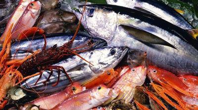 Immagine per la categoria Pesce fresco locale